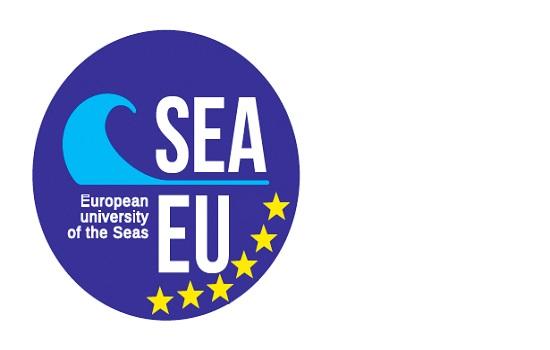 Would you like to work for SEA-EU?